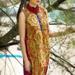 Designer Beech Tree Ready to Wear Dresses